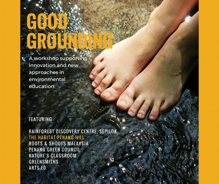 Good Grounding: A specialized workshop for EE practitioners
