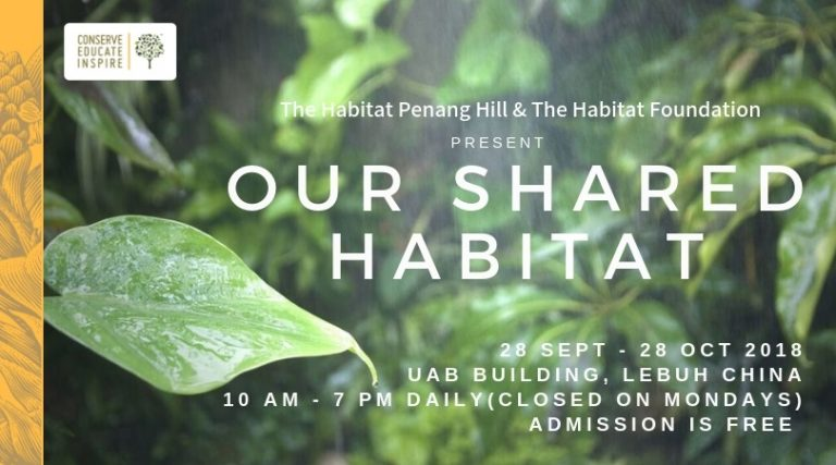 'Our Shared Habitat' Exhibition opens for one month in George Town