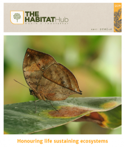 Habitat Hub – Monthly Newsletter