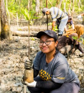The Habitat Team plants mangrove trees at Sungai Acheh