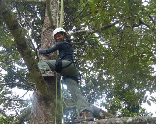 Dr Sheema Abdul Aziz installing camera traps as part of her fruitbat research on Tioman Island.