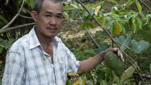 The farming community of Penang Hill produce fruits and vegetables for local consumption