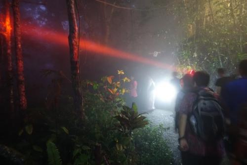 The Night Spotting Project, led by Priscillia Miard, from Universiti Sains Malaysia, is making a difference by providing insights into the ecology of nocturnal mammals using new wildlife sensing technology such as thermal cameras and ultrasound.