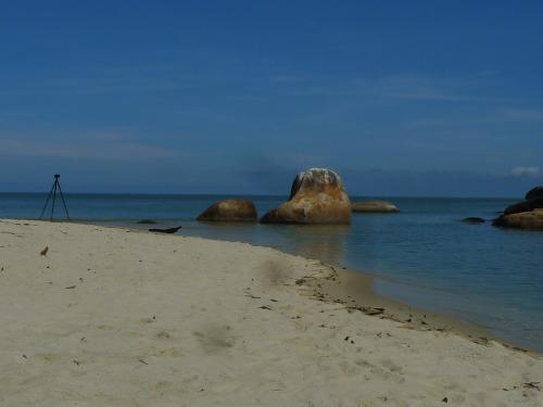 View of the coastline at Pantai Kerachut