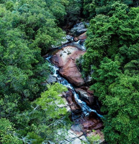 The forests of the Biosphere Reserve are essential for providing clean water for the population of Penang island